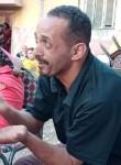 هانى ابوغاليه, 39  , Cairo