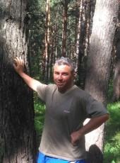 Denis, 42, Russia, Berdsk