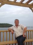 Baran, 41  , Sinop