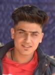 Zal, 18  , Egypt Lake-Leto