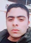 Faried, 21  , Cairo