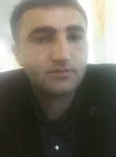 parviz, 28, Kazakhstan, Petropavlovsk