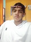 Rodrigo, 18  , Ananindeua