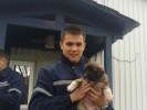 Дмитрий, 27 - Just Me Photography 2
