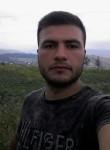 amilazeri, 25  , Shamkhor