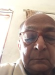 Surendra Shah, 73 года, Gandhinagar