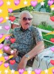 Fantom Huseyin, 62  , Kocaali