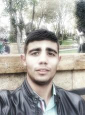 Hamido, 22, Azərbaycan Respublikası, Bakı