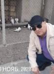 Ilgam, 50  , Baku