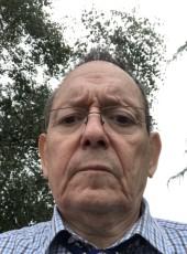 majorisque, 64, France, Perros-Guirec