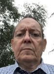 majorisque, 62, Perros-Guirec