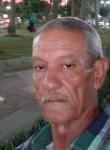 ميسوالمصرة, 73  , Alexandria