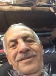 محمد داود, 71  , Russeifa