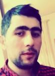 Misha, 27  , Yerevan
