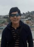 Walter, 56  , Santiago