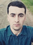 Aleksey, 25  , Tolyatti
