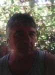 Тони, 61  , Svishtov