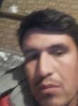 safarsalihov