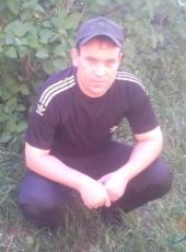 Nikolay, 41, Russia, Volgograd