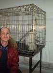 ALEX, 35  , Chernushka