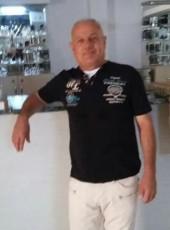 hikmet koz, 59, Spain, Mula