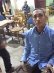 ابو غرام, 29  , Bilbays