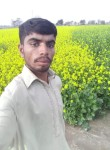 safdar ali, 21, Rawalpindi