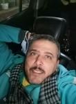 Haitham, 38  , Cairo