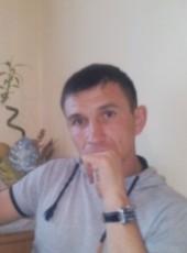 Kolya, 38, Russia, Saint Petersburg
