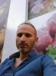 poyraz, 40  , Damascus