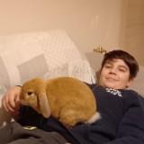 Francesco , 18  , Dairago
