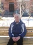 Vladimir, 66  , Kopeysk