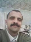 على الطحاوى, 36  , Al Minya