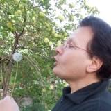Alberto, 55  , Muggia