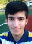 suat keskinel, 22 года, Sesamus