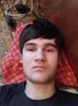 Alek, 20  , Bukhara