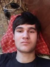 Alek, 21, Uzbekistan, Bukhara