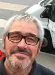 wildcat, 51  , Hastings