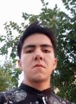 sardorbek, 23  , Tashkent