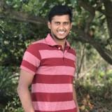 Mithun, 27  , Mulappilangad