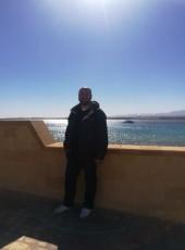 Mohamed farouk, 39, Egypt, Hurghada