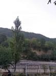 Qafqaz, 18  , Xacmaz