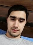 Michael, 25  , Tashkent