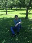 Amil, 28  , Sirvan