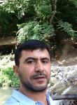 Ali, 20  , Haciqabul