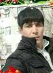 Bek, 40  , Bukhara