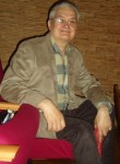 vladimir, 67, Saint Petersburg
