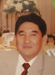 Elemes, 72  , Almaty