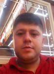Mustafa, 29  , Elmali