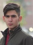 Şahin, 20  , Denizciler